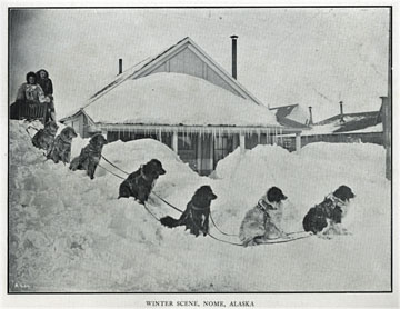 "Winter scene dog team. For sale: original view book               ""Souvenir of North Western Alaska"" by O.D.               Goetz."