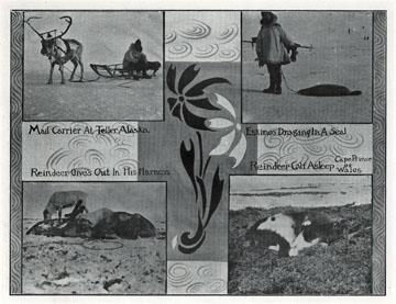 "Mail carrier at Teller, Alaska. For sale: original               view book ""Souvenir of North Western Alaska"" by               O.D. Goetz."