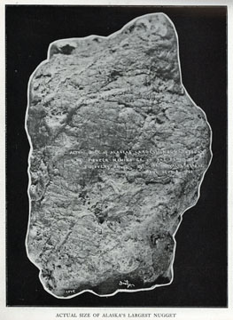 """Actual size of               Alaska's largest nugget. For sale: original view book               """"Souvenir of North Western Alaska"""" by O.D.               Goetz."""