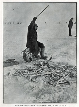 """Tom cod fishers out on Behring Sea [Bering Sea],               Nome, Alaska. For sale: original view book """"Souvenir               of North Western Alaska"""" by O.D. Goetz."""