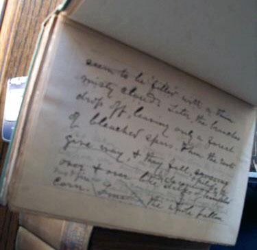 John Muir manuscript edition for sale.