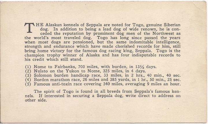 For sale: Leonhard               Seppala's original advertising card, or postcard, of Togo               sent to Carl Lomen!